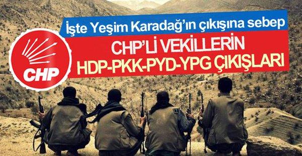 İşte Yeşim Karadağ'ın Bahsettiği CHP-HDP Kardeşliği
